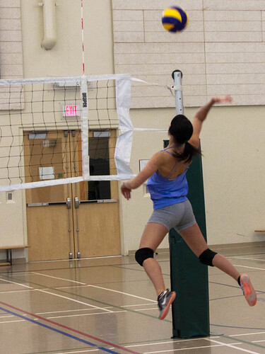 Pairs_Volleyball_February_15_2014-6